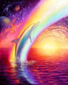 Two of my favourite things DOLPHINS AND RAINBOWS Ha Ha!