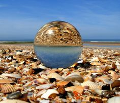 Shells through the crystal ball  by april-mo, via Flickr