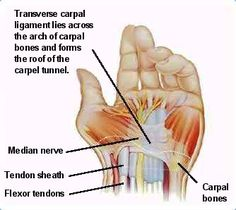 how to cut your wrist without pain