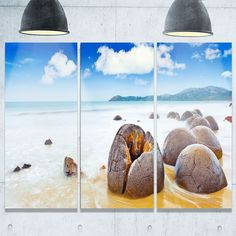 Designart - Midday Moeraki Boulders - Seashore Photo Glossy Metal Wall Art