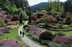 Best Public Garden Winners: 2014 10Best Readers' Choice Travel Awards  Located in Victoria, British Columbia, the Butchart Gardens have been blooming for more than 100 years on the site of an old limestone quarry. Today, they're considered one of Canada's best public gardens. The famous Sunken Garden features colorful beds of annuals, flowering trees and shrubs, and the Butchart Rose Garden houses one of the best collections in the world.