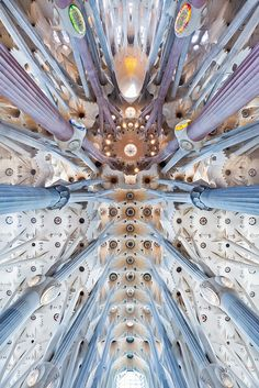 Incredible Sagrada Familia Ceiling