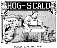 """""""Hog-Scald Makes Scalding Easy"""" and apparently removes halftone dots as well. From Farwell, Ozmun, Kirk & Co. catalog, no date."""