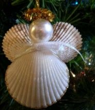 sea shell decoration- perfect for crafting critters project.