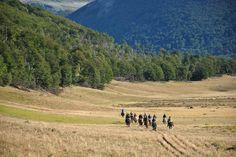 Argentina • Tierra del Fuego Río Grande