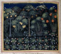 The Healing Power of a Garden - A Medieval View :http://www.medievalists.net/2016/04/17/the-healing-power-of-a-garden-a-medieval-view/