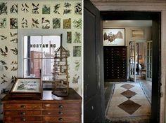 Great vintage bird 'plates' make cool wallpaper.