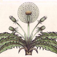 modern dandelion tile
