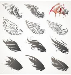 Set of wings vector on VectorStock®