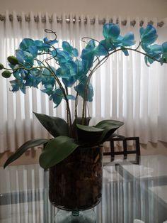 Aprenda a fazer arranjo de orquídeas artificiais! Veja o passo a passo aqui! | Casa,Quintal,Etc & Tal Fake Flower Centerpieces, Wonderful Flowers, Fake Flowers, Houseplants, Flower Designs, Flower Power, Floral Arrangements, Orchids, Glass Vase