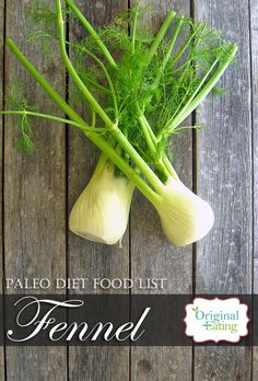 Learn secrets other sites won't tell you about Fennel Bulb and other foods on the Paleo diet food list including Paleo diet recipes only at Original Eating! Paleo Diet Food List, Diet Recipes, Fennel, Bulb, Foods, The Originals, Vegetables, Eat, Health Foods