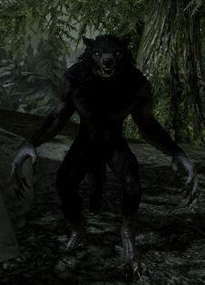Werewolf Elder Scrolls Lore, Skyrim, Cool Art, Awesome Art, Horror Movies, Panther, Batman, Creatures, Superhero