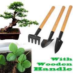 $1.65 (Buy here: https://alitems.com/g/1e8d114494ebda23ff8b16525dc3e8/?i=5&ulp=https%3A%2F%2Fwww.aliexpress.com%2Fitem%2F3pcs-Mini-Garden-Plant-Tool-Set-With-Wooden-Handle-Gardening-Tool-Shovel-Rake-SGG%2F1981661673.html ) 3pcs Mini Garden Plant Tool Set With Wooden Handle Gardening Tool Shovel Rake SGG# for just $1.65