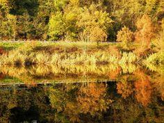 '598 - Lakeside in the mirror 16' von Elke Seifried bei artflakes.com als Poster oder Kunstdruck $15.68