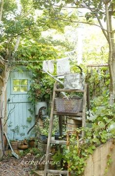 ガーデニングが好きな方なら『ナチュラルガーデン』や『ナチュラルガーデニング』という言葉をご存知の方も多いと思いますが、そもそもどんなお庭のことを指すのでしょうか?