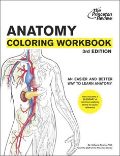 Anatomy Coloring Workbook, 3rd Edition by Princeton Review | Book ...