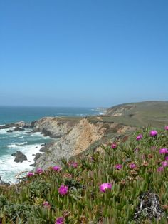 California - USA, Bodega Bay, California