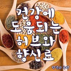 당신의 주방(이지홈쇼핑) - ■ 대표적인 파스타... : 카카오스토리 Snack Recipes, Snacks, Kimchi, Gingerbread Cookies, Chips, Meat, Cooking, Desserts, Korea
