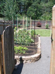 raised garden beds @ Jamie's