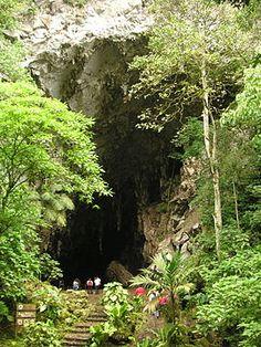Monumento Natural El Guácharo