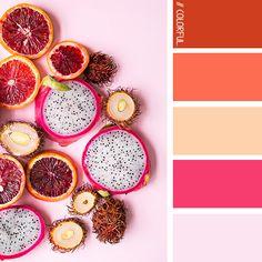// COLORFUL. 0005 - PHOTOCREDIT: UNSPLASH @brookelark #kleur #kleurpaletten #kleurpallet #color #colorpalette #colorpalletes #colour #colourpalette #colourpalettes