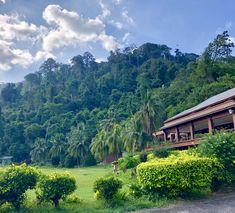 Tioman, Malaysia 🇲🇾 - the jungle Mountains, Nature, Travel, World, Viajes, Naturaleza, Destinations, Traveling, Trips