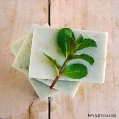 Natural Peppermint Soap Recipe + Instructions: Recipe and instructions for how to make natural cold-process soap with peppermint essential oil. Includes a full DIY video explaining each step Peppermint Soap, Peppermint Leaves, Soap Making Recipes, Homemade Soap Recipes, Soap Making Process, Cold Process Soap, Diy Crafts To Do, Dehydrator Recipes, Recipe Instructions