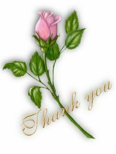 animated thank you | Pictures Animations Thank You MySpace Cliparts