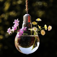 vintage luce bulbo vaso impianti idroponici vaso di vetro appesi vasi buld