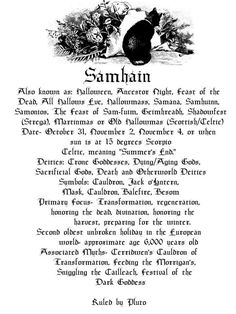 Other Wiccan & Pagan Collectibles Samhain Halloween, Halloween Fun, Halloween Books, All Souls Day, Season Of The Witch, Winter Solstice, Book Of Shadows, Hallows Eve, Witchcraft
