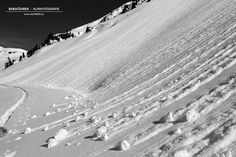 Skitouren in den Kitzbüheler Alpen mit deinem Bergführer von alpindis.at Salzachgeier, Gerlos, Oberpinzgau, Salzburg