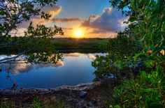 Protect Beautiful Lagoon from Development - ForceChange