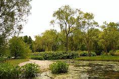 Castle Gardens of Arcen