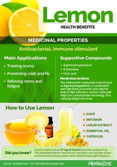 lemon - Health Plus - Diet Plans, Weight Loss Tips, Nutrition and Nutrition Holistique, Broccoli Nutrition, Holistic Nutrition, Cheese Nutrition, Nutrition Classes, How To Stay Healthy, Healthy Life, Health Tips, Health And Wellness