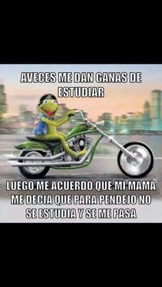 Jajajajajaja meme rana rene risa #compartirvideos #imagenesgraciosas #imagenesdivertidas