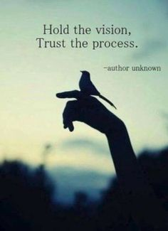 """Hold the vision, trust the process."" #inspiration #ttc #infertilitybattle"