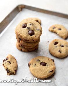 The BEST Low Carb Sugar-Free Chewy Chocolate Chip Cookie! #lowcarb #sugarfree #keto #LCHF #Atkins #Glutenfree #grainfree #nutfree #ketogenic