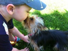 Yorkie kisses are the best!!