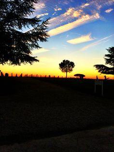 Coucher de soleil sur les vignes (Sauternes)