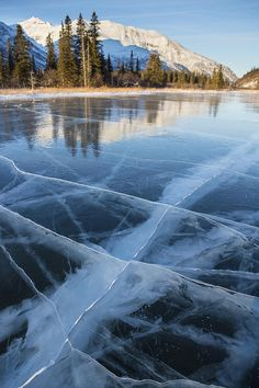 Fractured Ice on a Mountain Pond in the Alaska Range near Cantwell; photo by Tim Grams