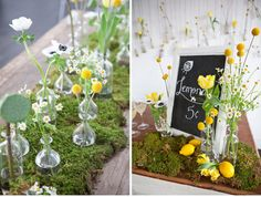 science chemistry wedding bottles billy balls yellow and moss centerpieces