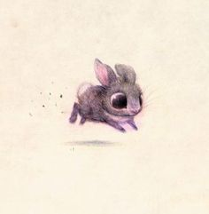 Fuzzy Bunny Drawing.