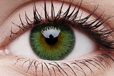 Check out the largest range of coloured contact lenses & costume contact lenses including Halloween and crazy lenses & big eyes contacts Color Contact Lenses Online, Black Contact Lenses, Coloured Contact Lenses, Green Contacts Lenses, Colored Eye Contacts, Grey Contacts, Costume Contact Lenses, Prescription Contact Lenses, Cosplay Contacts