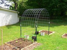 Cattle panel trellis for grape vines, melons, beans, cucumbers, and flowers. So easy. 4 t posts 1 cattle panel from a local farm store. Veg Garden, Garden Trellis, Lawn And Garden, Garden Beds, Bean Trellis, Garden Plants, Vegetable Gardening, House Plants, Fruit Garden