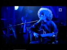 Angelo Branduardi - Il Dono Del Cervo (Live @Antwerpen) - YouTube