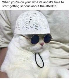 Gotta start praying Habibi