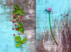 rozkvetle-jaro-jahudky-pazitka