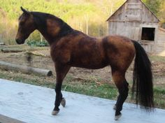 Custom horse portrait needle felted pet memorial от Ainigmati