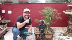 Bonsai, Landscaping Tips, Yearly, Lets Go, Food, String Garden