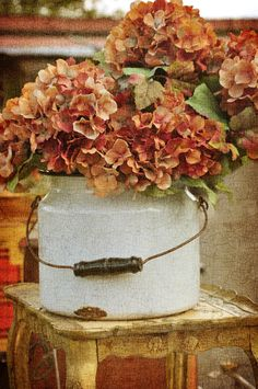 Vintage container and hydrangea - lovely